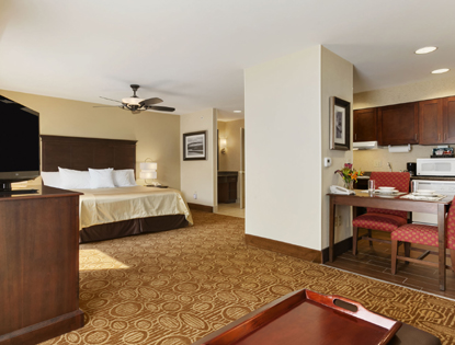 Vestal Holiday Inn Express